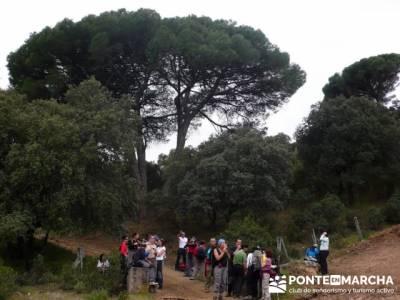 Senderismo Madrid - Pantano de San Juan - Embalse de Picadas; la pedriza mapa